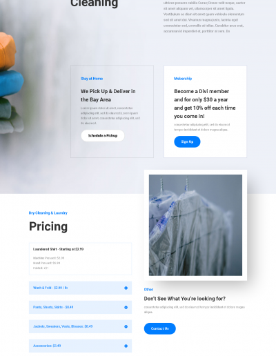 screencapture-elegantthemes-layouts-services-dry-cleaning-landing-page-live-demo-2020-02-08-16_14_06